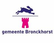 Hoe de gemeente Bronckhorst Studytube gebruikt om organisatiedoelen te realiseren
