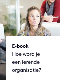 E-book Hoe word je een lerende organisatie