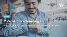 Micro & macrolearnings
