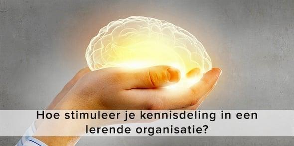 Stimuleer kennisdeling in lerende organisatie